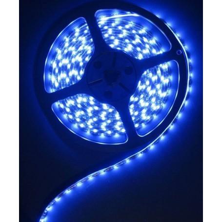 Oem - Blue 12V IP65 SMD5630 Led Strip 60LED per meter - LED Strips - AL155-CB