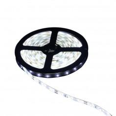 Oem - IP20 SMD3528 12V LED Strip 60LED Cold White - LED Strips - AL243-CB