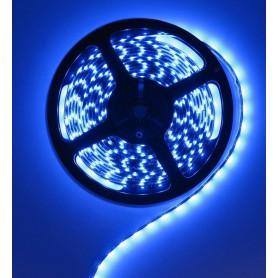 Oem - IP20 SMD5050 Blue 12V Led Strip 60LED - LED Strips - AL009-CB