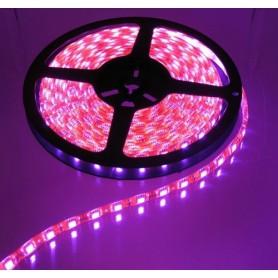 Oem - 5M Pink 60LED/M IP65 White PCB SMD3528 AL079 - LED Strips - AL079