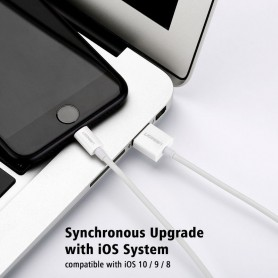 UGREEN - Lightning USB Sync & Charging cable for iphone, ipad,itouch US155 - iPhone data cables  - UG414-CB www.NedRo.us