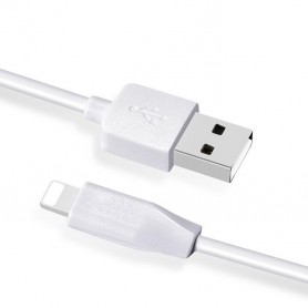 HOCO - Hoco PremiumLightning to USB 2.0 2.1A Data Cable for Apple iPhone - iPhone data cables  - H60412-CB www.NedRo.us