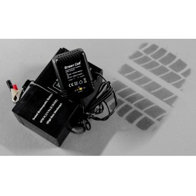 Green Cell - Green Cell 2V / 6V / 12V 0.6A battery charger with clip terminals - Battery chargers - GC048 www.NedRo.us