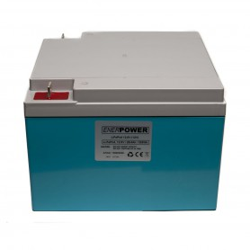 Enerpower - Enerpower 12V 25.6Ah - LiFePo4 (replacement of lead battery) - LiFePO4 battery - NK495