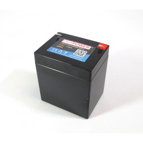 Enerpower - Enerpower 12V 4.8Ah - LiFePo4 (replacement of lead battery) - LiFePO4 battery - NK497
