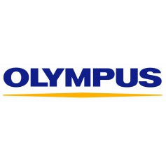 Olympus photo-video chargers