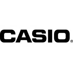 Casio photo-video batteries