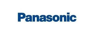 Panasonic photo-video batteries